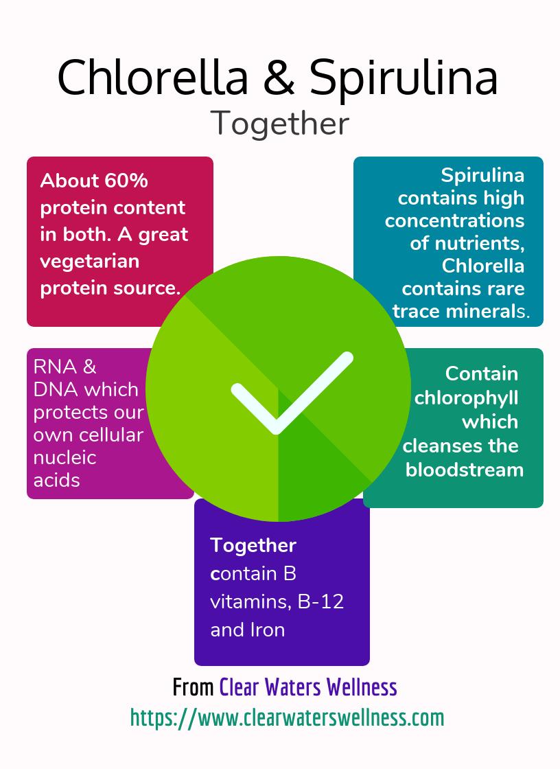 best brands chlorella & spirulina together Infographic