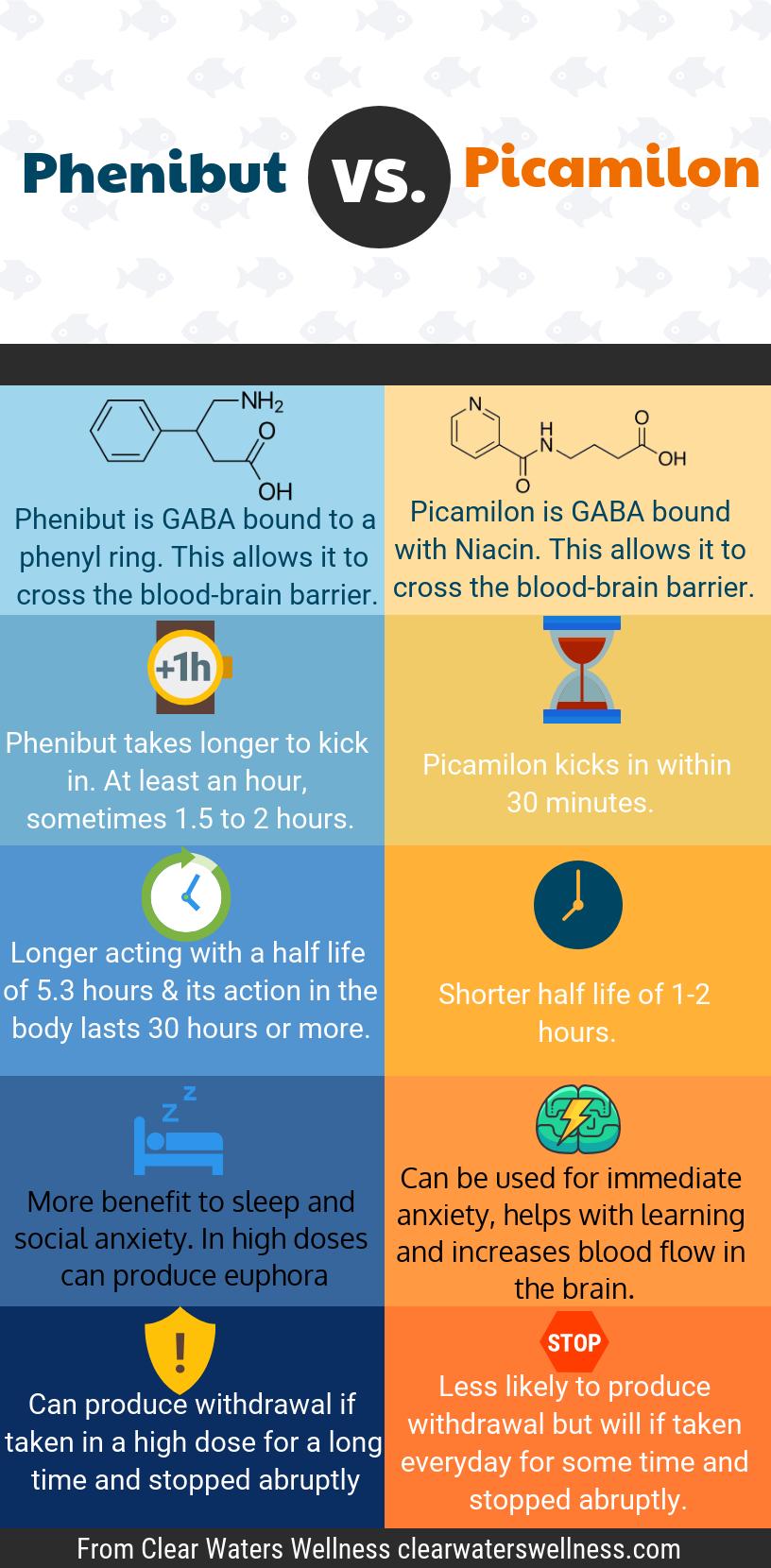 phenibut vs picamilon Infographic